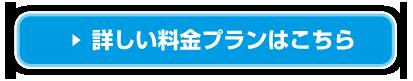 東日本にお住まいの方の詳しい料金プラン